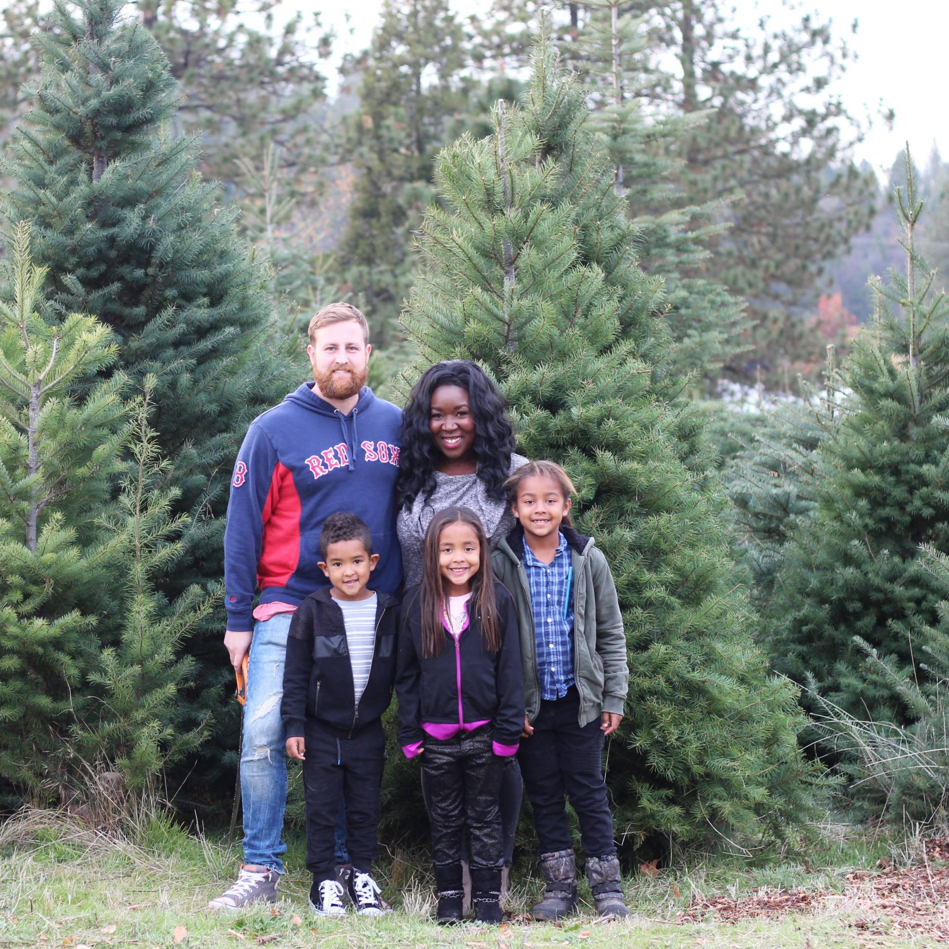 Christmas tree hunt