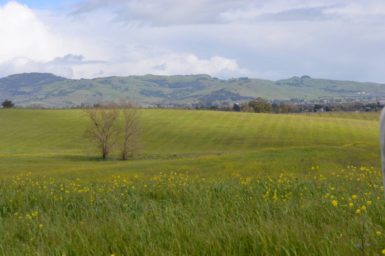 Liana Estates: Napa Valley