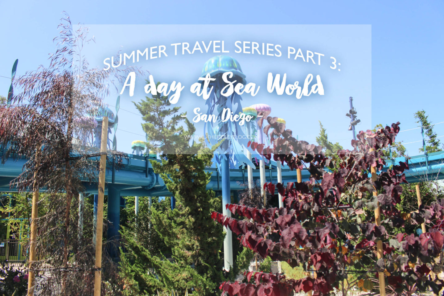 Summer Travel Series Part 3: A Day At Sea World San Diego