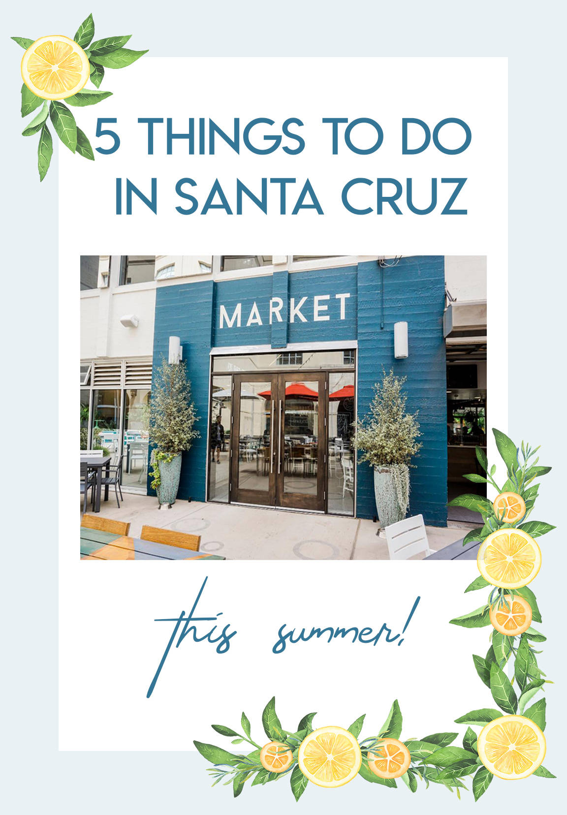 5 Things To Do In Santa Cruz