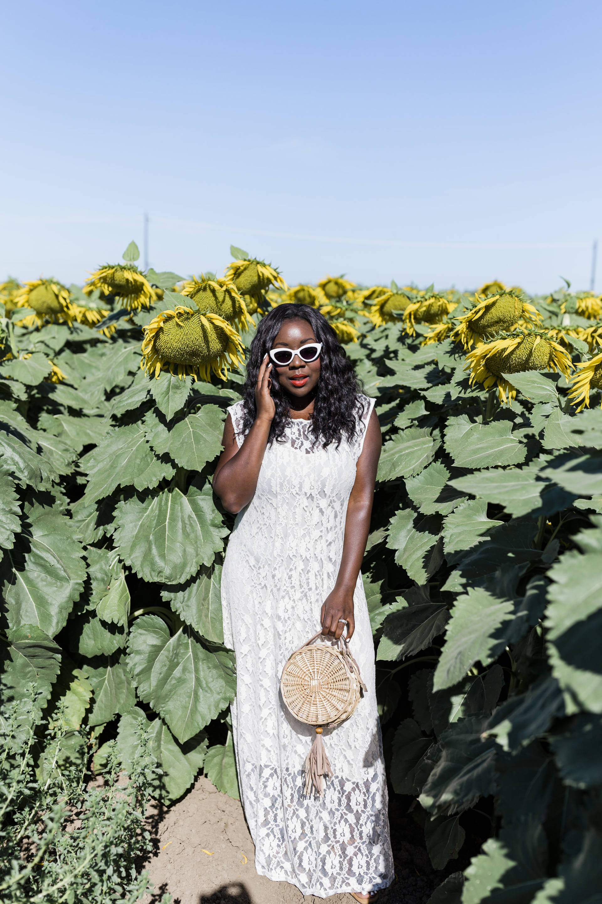 Ruthie Ridley Blog: Sunflower Fields In Winters California